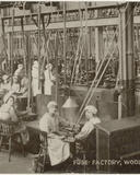 workers in the fuse factory woolwich arsenal